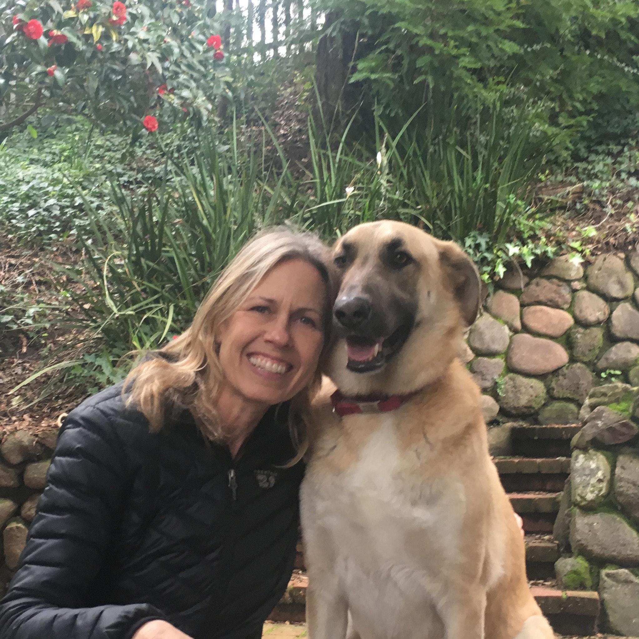 Maureen's dog boarding