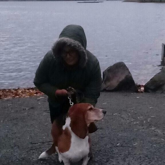 Salem's dog day care