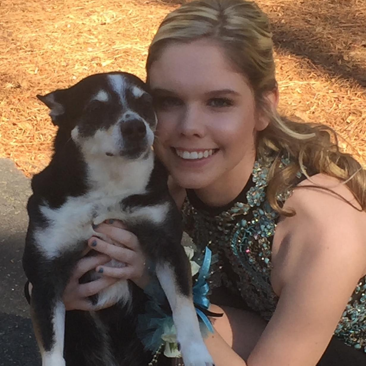 Mckenzie's dog day care