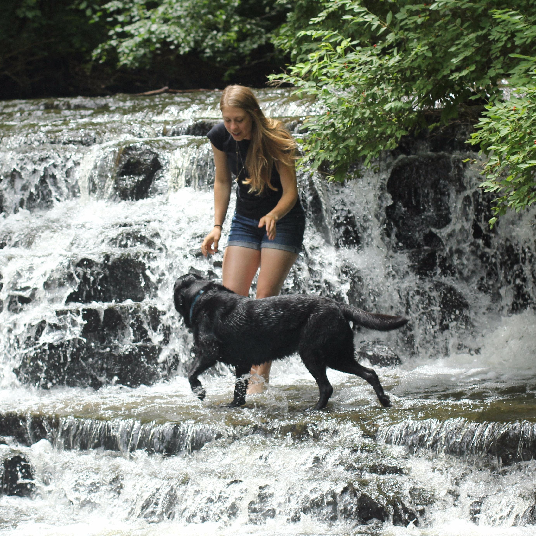dog walker Devan