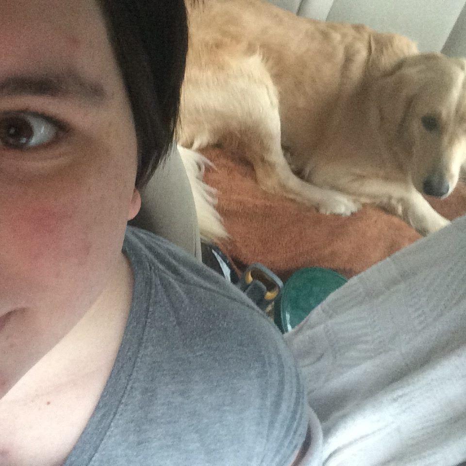 pet sitter Libby
