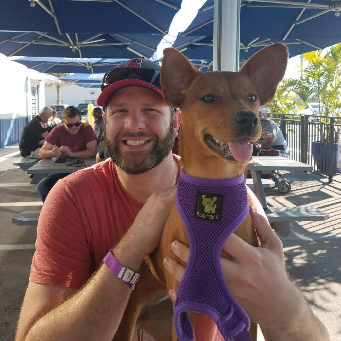 Daryl's dog day care