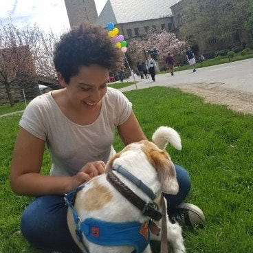 Simone's dog day care