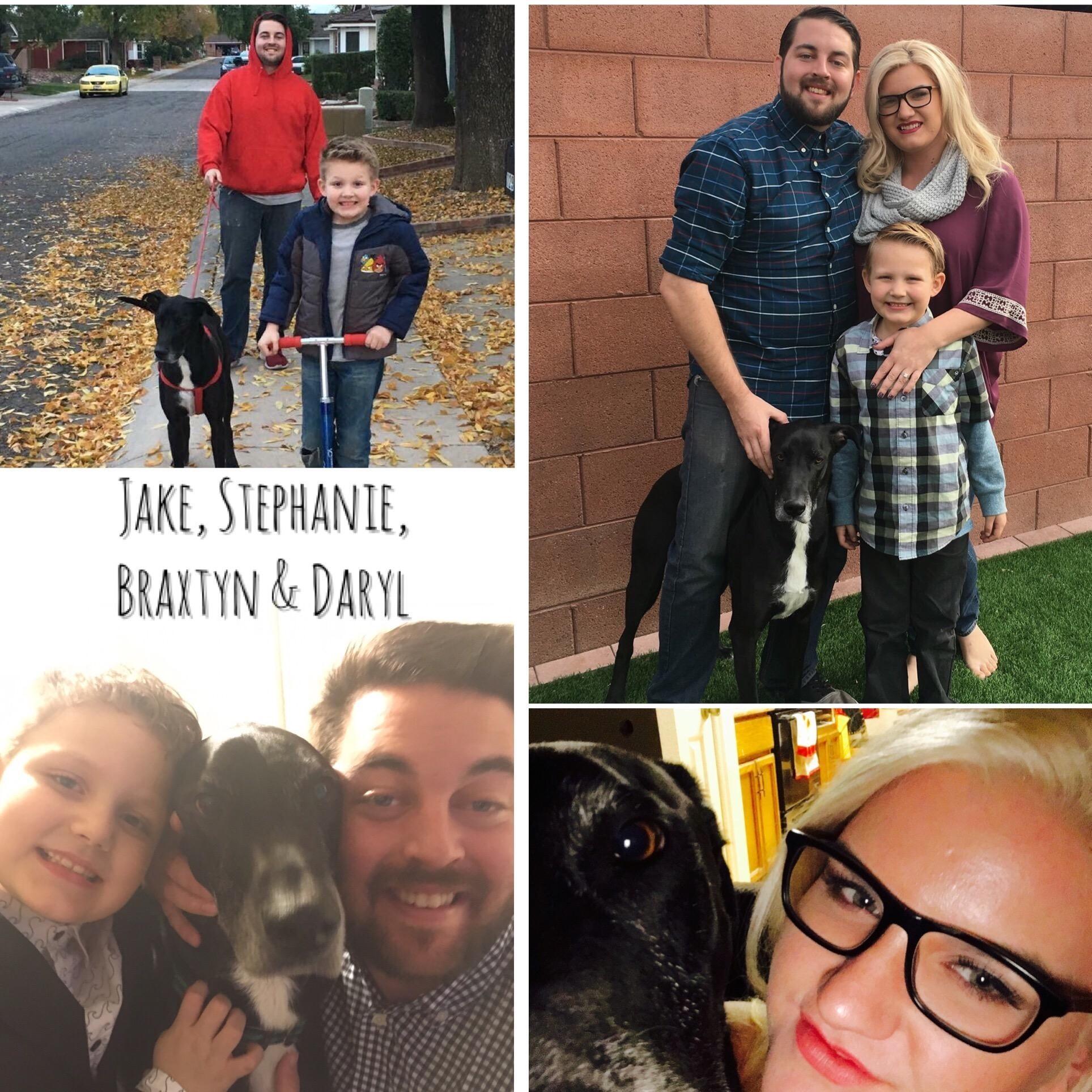 Stephanie's dog day care