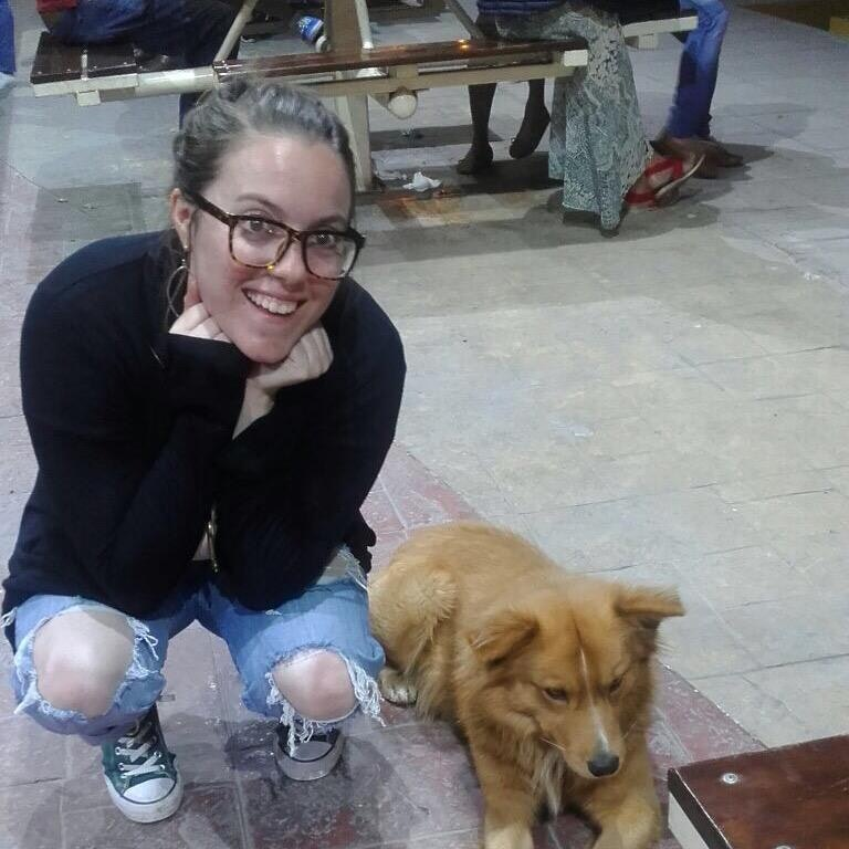 Bridget's dog boarding