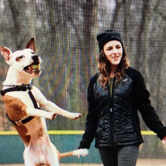 Adelina's dog day care