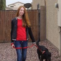 Sadie's dog day care