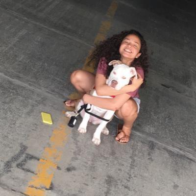 Kawehi's dog day care