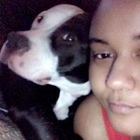 Ramona's dog day care