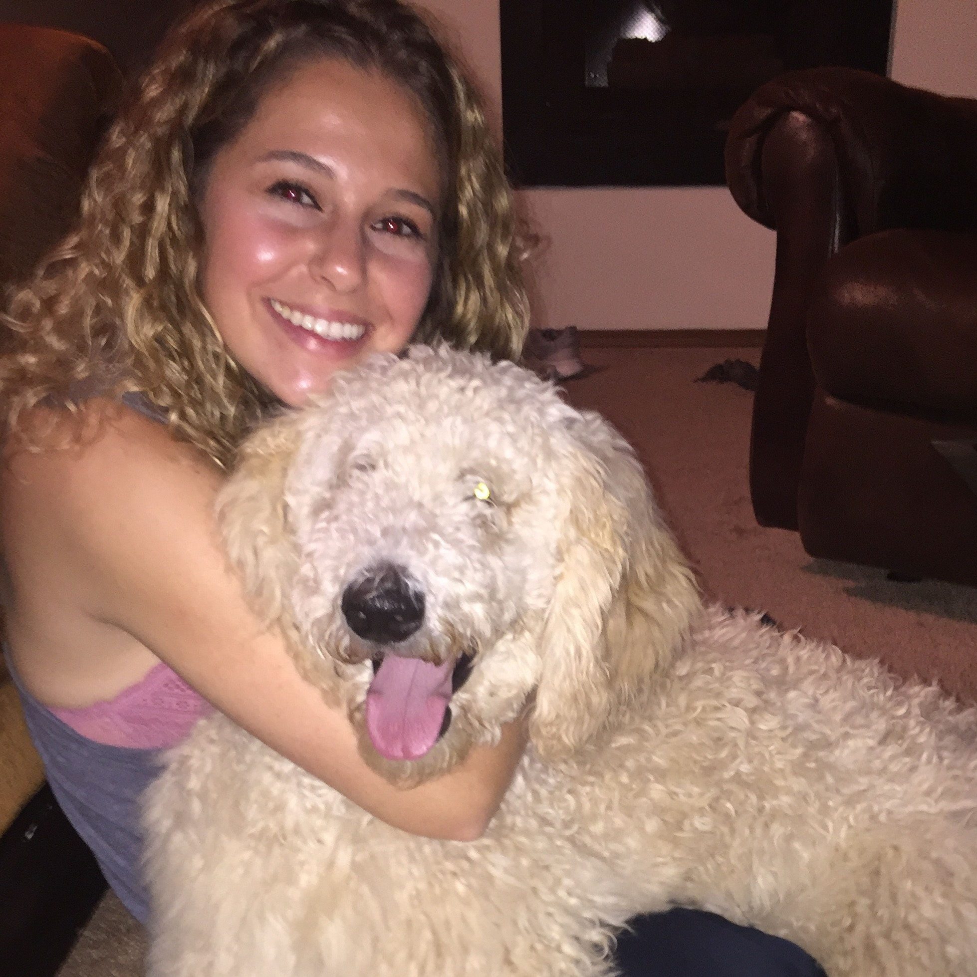 Josephine's dog boarding