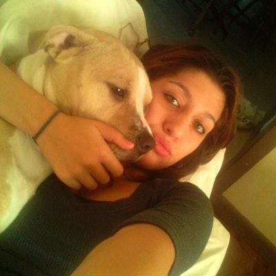 Anjella's dog day care