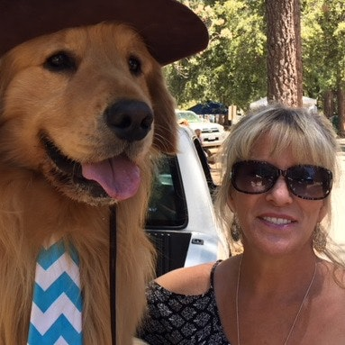 Sherri's dog day care