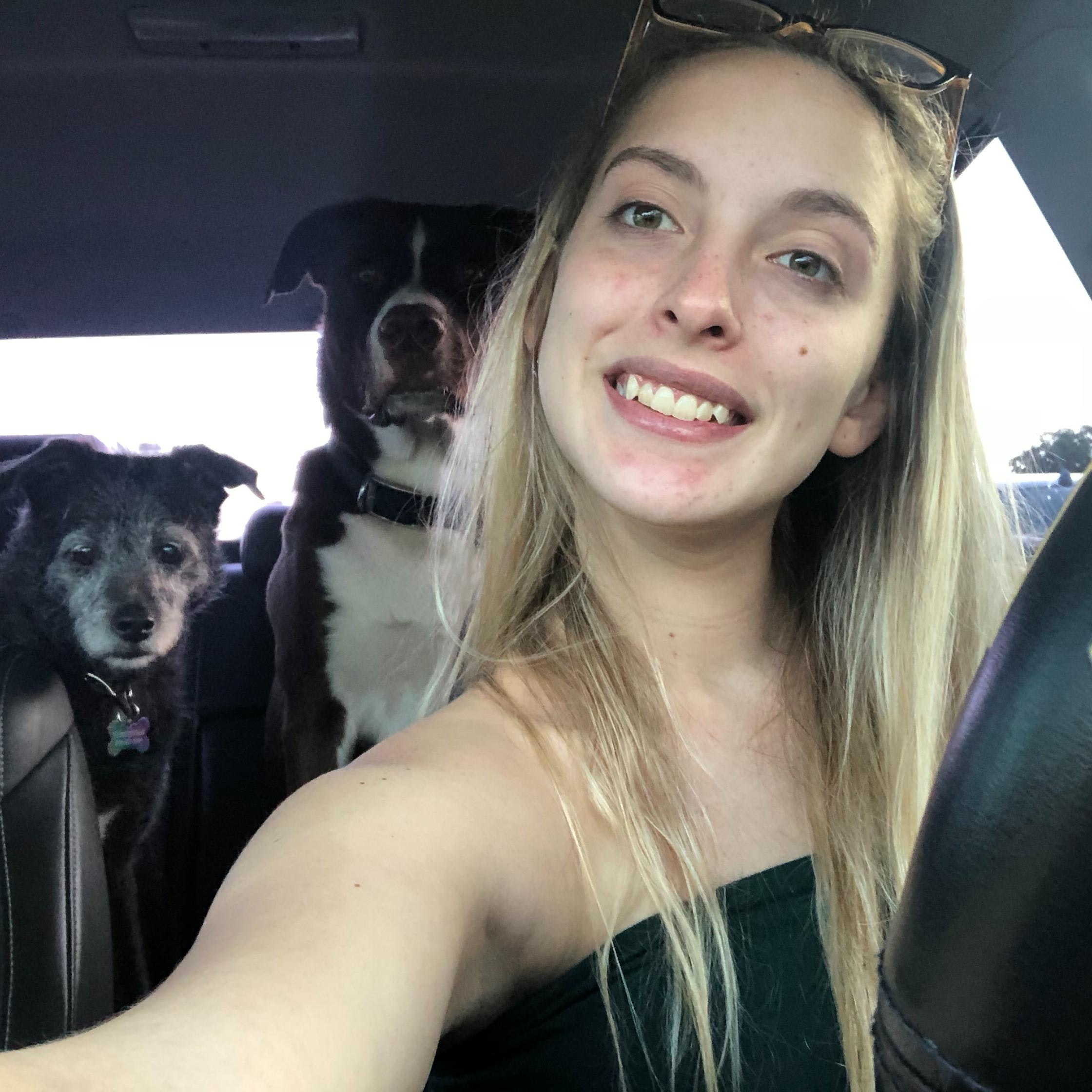 Ana's dog boarding