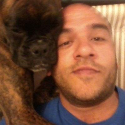 Osvaldo's dog boarding