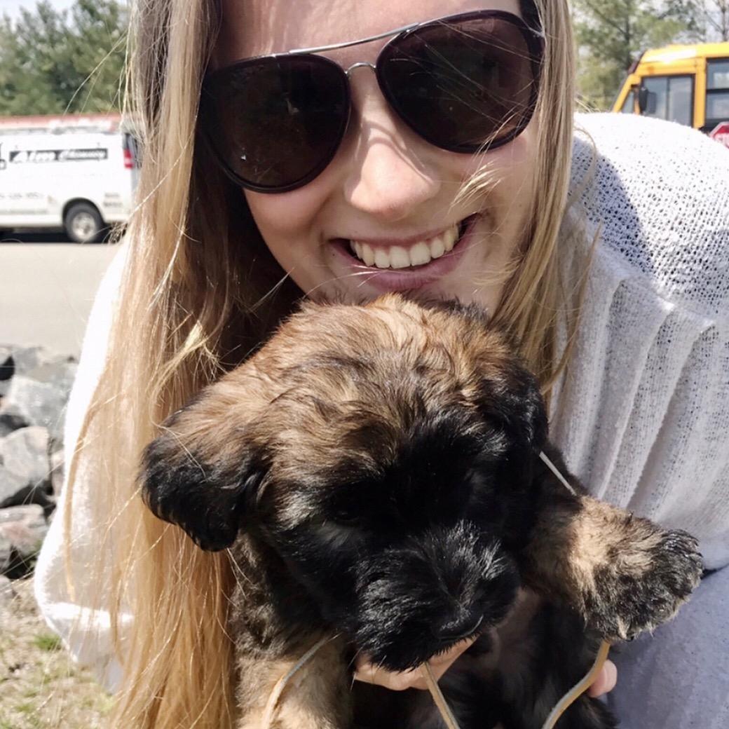 Kyara's dog day care