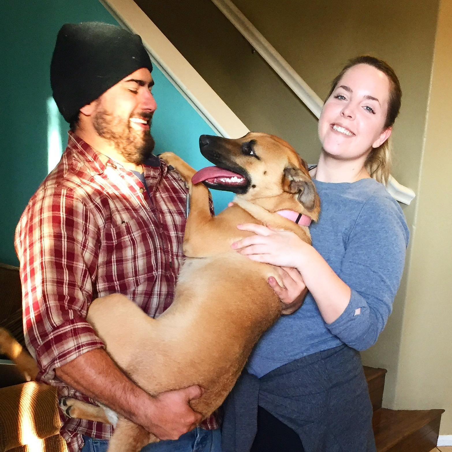 Kelly & Daniel's dog boarding