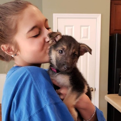 Kenzie's dog day care