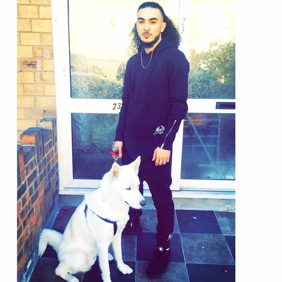 Ihsan's dog boarding
