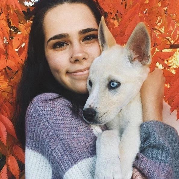 Fabiola's dog day care