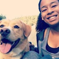 Myshelle's dog boarding