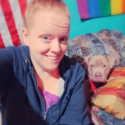 Ami's dog day care