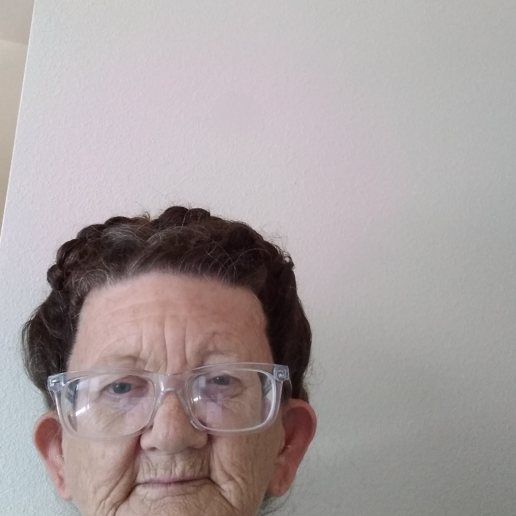 pet sitter Debbie