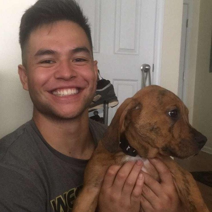 John's dog day care