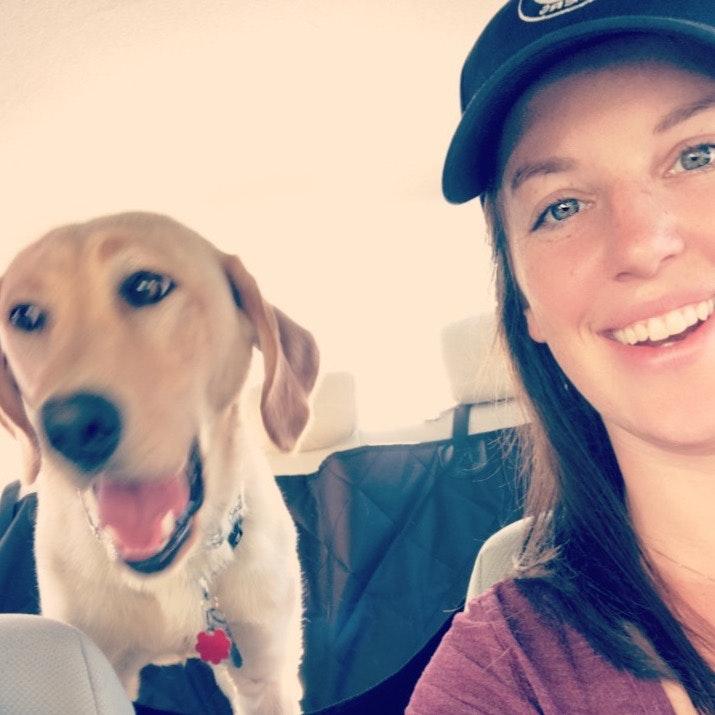 Tara's dog day care