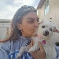 Domenica's dog day care