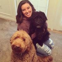 Chandler & Jaedy's dog boarding