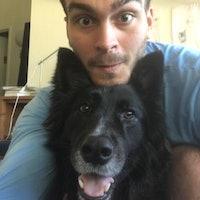 Seth's dog day care