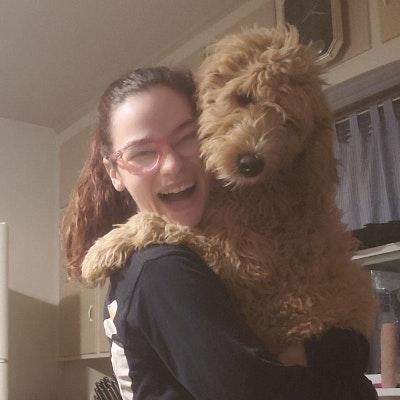 Audrey's dog boarding
