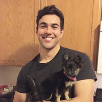 Julio's dog day care