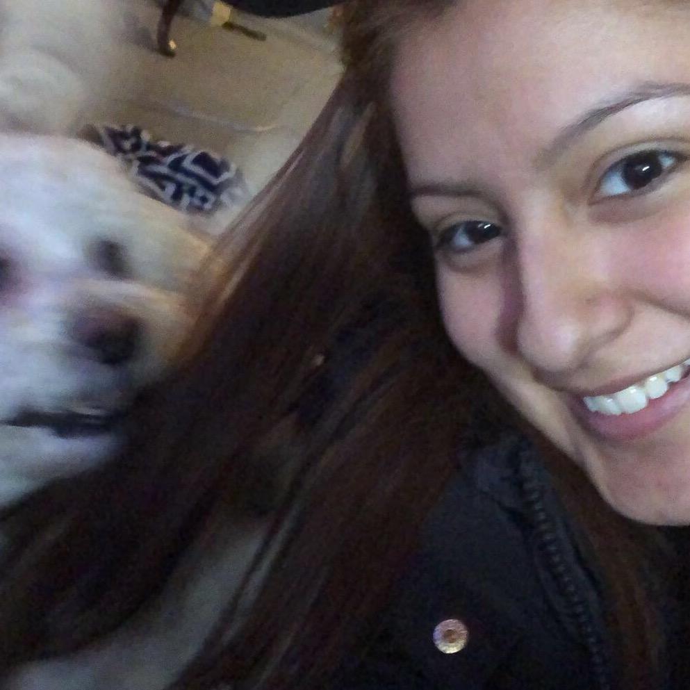 Lidia's dog boarding