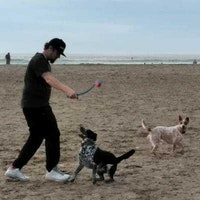 dog walker Joseph