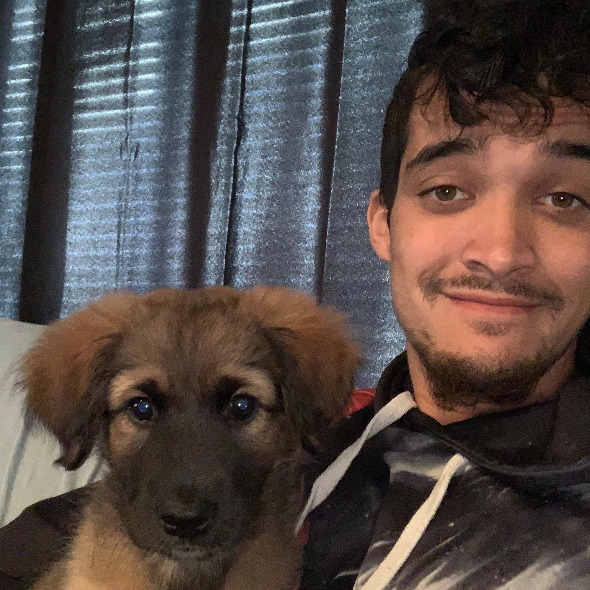 Jeremy's dog day care