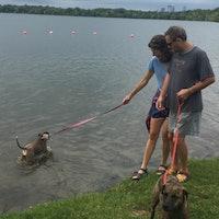 Steven & Maura's dog boarding