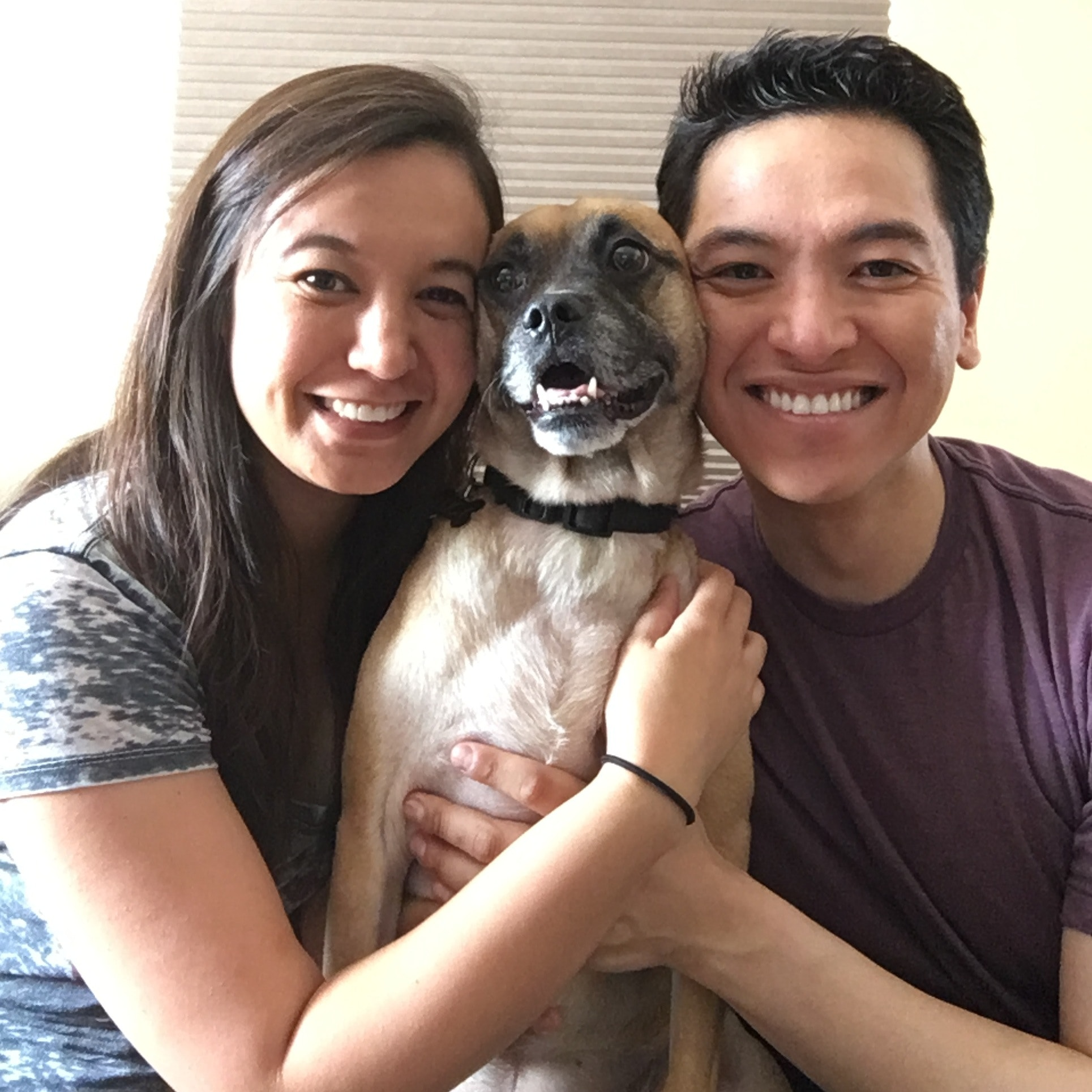 Earl & Katherine's dog boarding