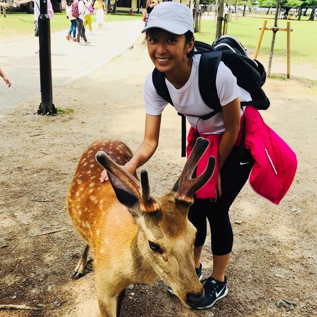 Shen Linda's dog boarding