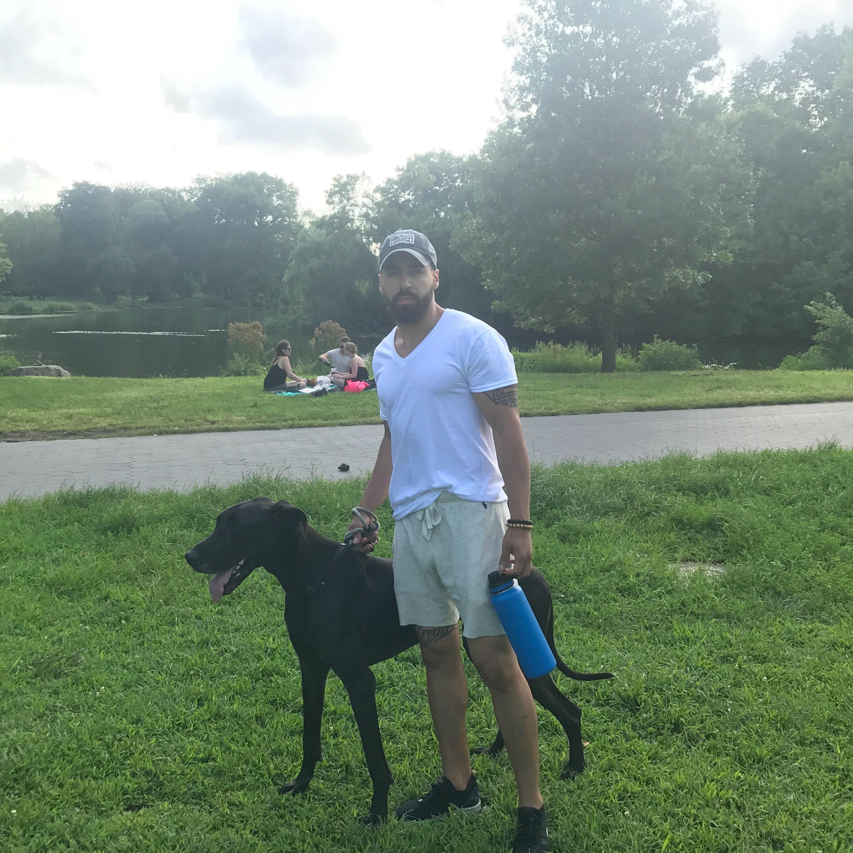 Justin Levi's dog boarding