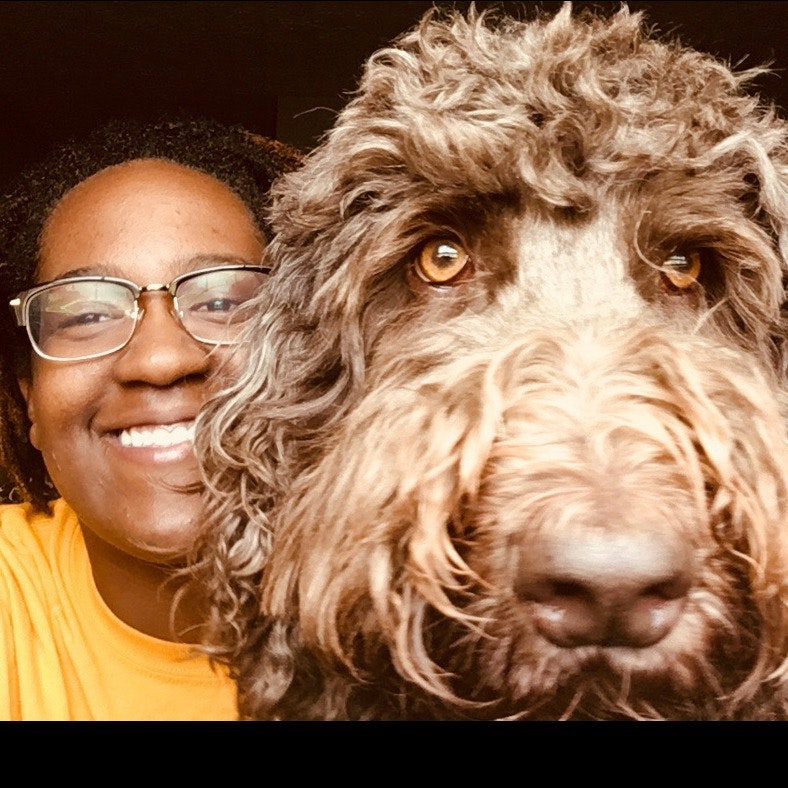 Jayla's dog day care