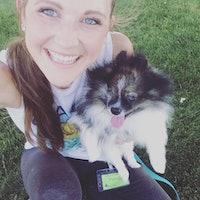 Allison's dog day care