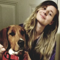 Alicja's dog day care