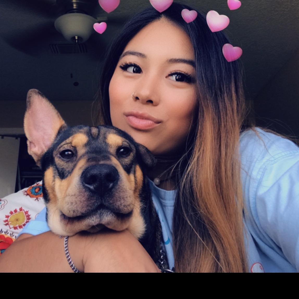 Katt's dog day care