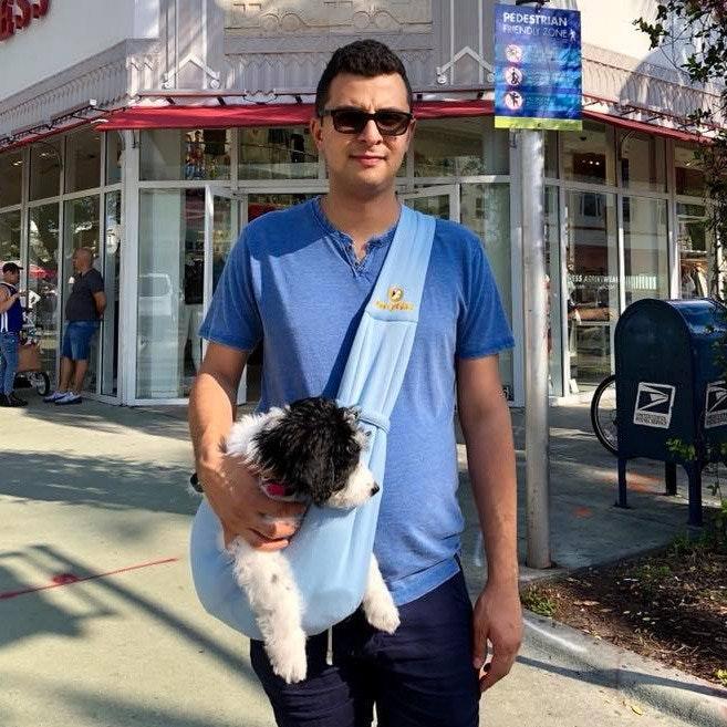 Soroosh's dog day care