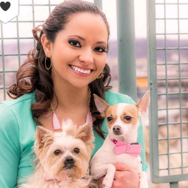 Priscilla's dog day care