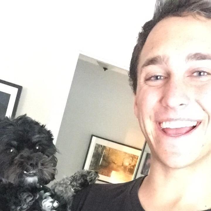 Tom's dog boarding