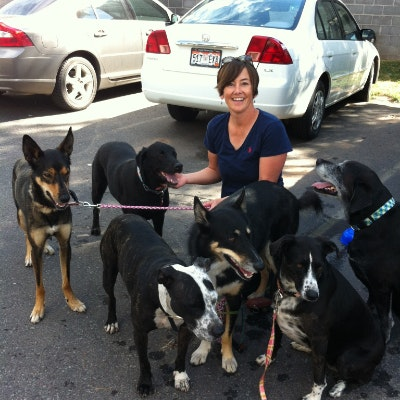 pet sitter Pagge