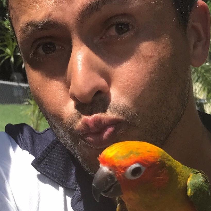 Luiz's dog day care