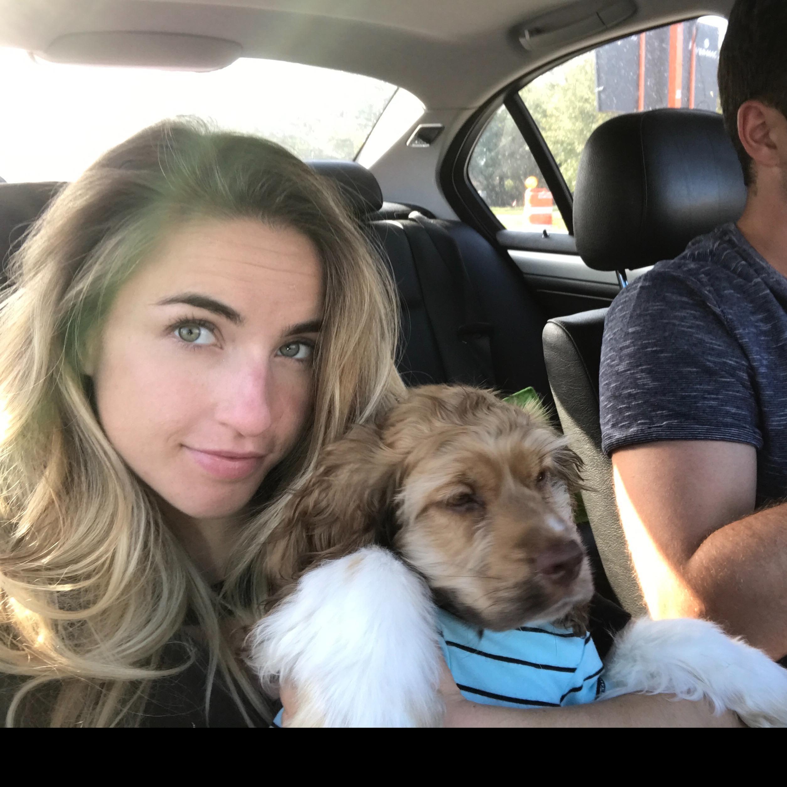 Amanda's dog boarding